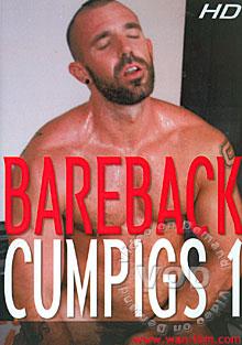 Bareback Cumpigs